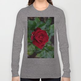 Single Red Rose Long Sleeve T-shirt
