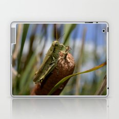 Grasshopper  2 Laptop & iPad Skin