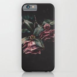 Camelia Flowers iPhone Case