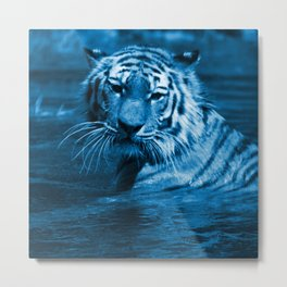 Swimming Tiger,blue Metal Print