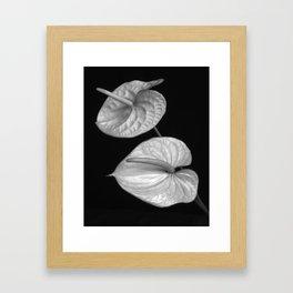 Zwei Blumen im Raum Framed Art Print