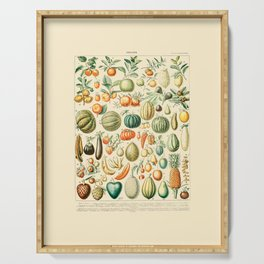 Autumn Harvest // Fruits by Adolphe Millot 19th Century Pumpkins Science Textbook Artwork Serving Tray