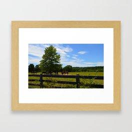 Shade Framed Art Print