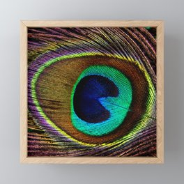 FEATHER Framed Mini Art Print