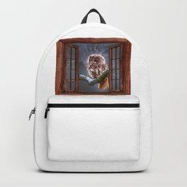 Owl behind a window frame Backpack