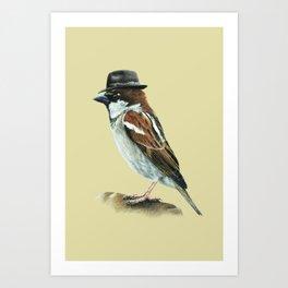 Italian sparrow Art Print
