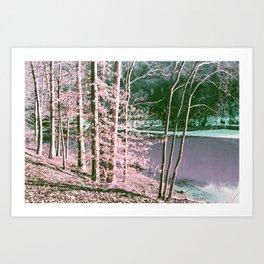 The Old Lake Art Print