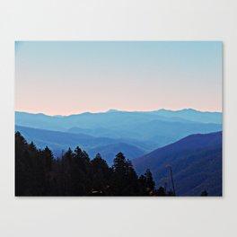 Shakonohey Canvas Print