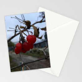 Redberry Stationery Cards
