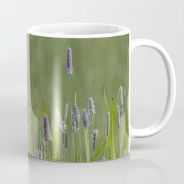 Yellow-Headed Blackbird, No. 1 Coffee Mug