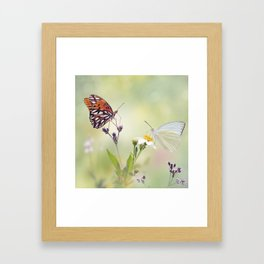 Gulf Fritillary and Great Southern White butterflies in a meadow Framed Art Print