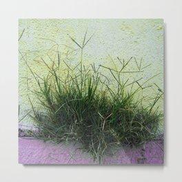 Minimal Flora - Hanging Garden Metal Print