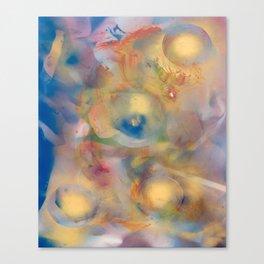 Case 093 Canvas Print