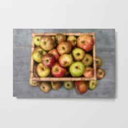 Windfall Apples Metal Print