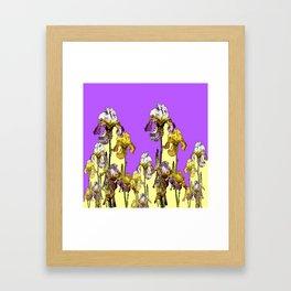 MODERN ART  LILAC-YELLOW IRIS GARDEN Framed Art Print