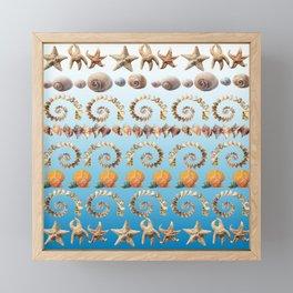 Caribbean Shells on Ibiza Blue Framed Mini Art Print