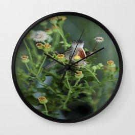 Hello Lizard  Wall Clock