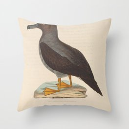 Sooty Albatross3 Throw Pillow