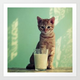 Kitteh haz milk Art Print