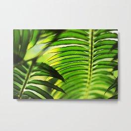 Natural Design Metal Print