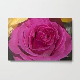Valentine's Day Roses 27 Metal Print