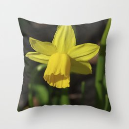 Golden Daffodil Throw Pillow
