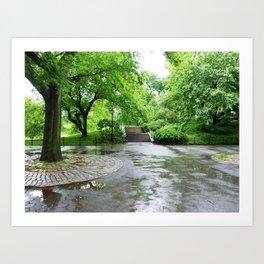Central Park in the Rain 1 Art Print