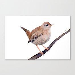 Wren, Bird, Brown Bird Watercolor Painting by Suisai Genki Canvas Print