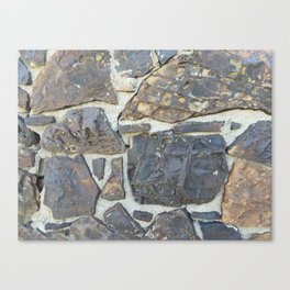 Dinosaur Bone House #1 Canvas Print