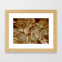 Sepia Tulips Framed Art Print