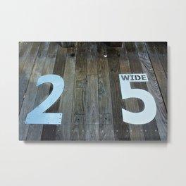 215 Metal Print