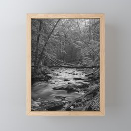 Creek with fallen trees in Catoctin Mountain Park, Thurmont, Maryland Framed Mini Art Print