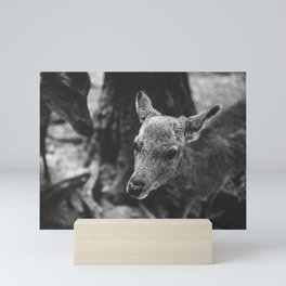 Deer look Mini Art Print