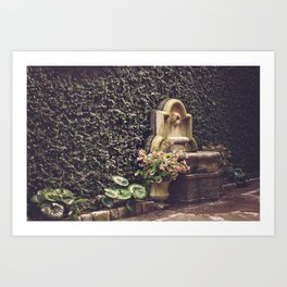 Ivy Wall in Charleston, SC Art Print