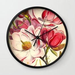 Beautiful Pink Flower Vintage Himalayan Plant Illustration Drawing Wall Clock