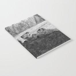 Fox Kits Sketch Notebook