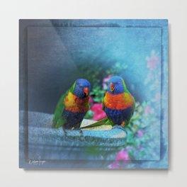 Rainbow Lorikeets Metal Print