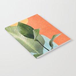 Nature Geometry VII Notebook