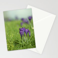 Crocus Haze Stationery Cards