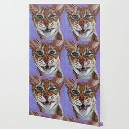 Sassy Cat Portrait Wallpaper