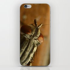 Fly Zone iPhone & iPod Skin