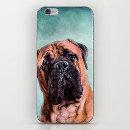 Bullmastiff dog iPhone Skin