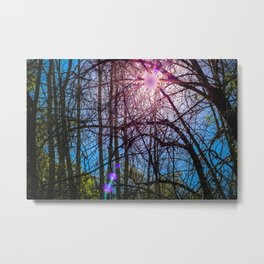 Purple Woods Metal Print