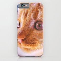 Orange cat Slim Case iPhone 6s
