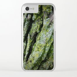 moss, bark Clear iPhone Case