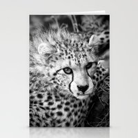 cheetah Stationery Cards featuring Cheetah by Mark Nelson