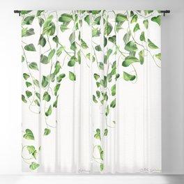 Golden Pothos - Ivy Blackout Curtain