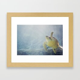 Coasting Turtle Framed Art Print