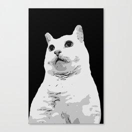 Floof Canvas Print