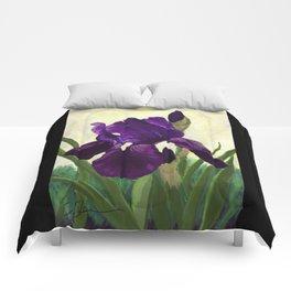 Purple Iris DP150530 Comforters